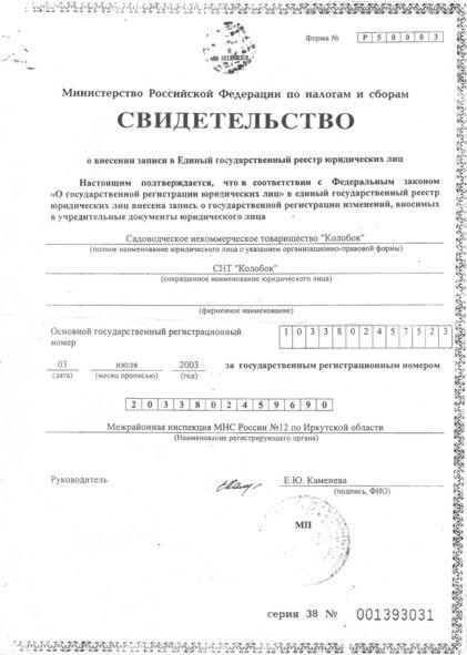 Выписка из протокола общего собрания образец о принятии в членство снт